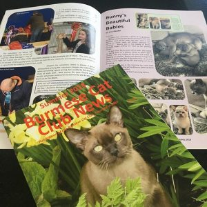 The Burmese Cat Club Magazine