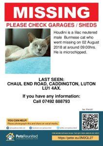 Lost Found List Burmese Cat Club